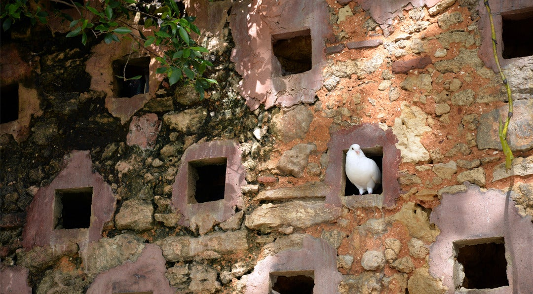 How to Avoid the Professional Pigeonhole in Sales and Marketing